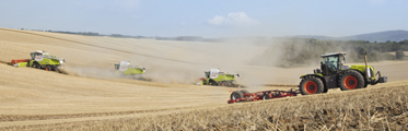 Cosechadora Claas Lexion 750 cut it